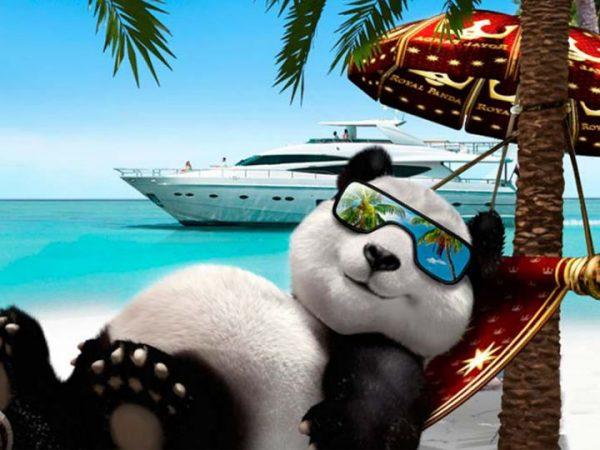 Royal Panda roulette kasino